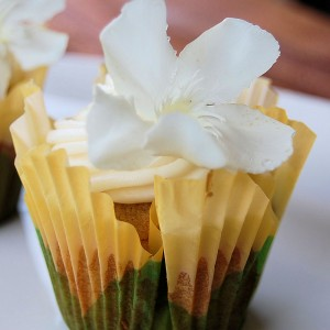 Hummingbird Cupcakes: Spring Is Here