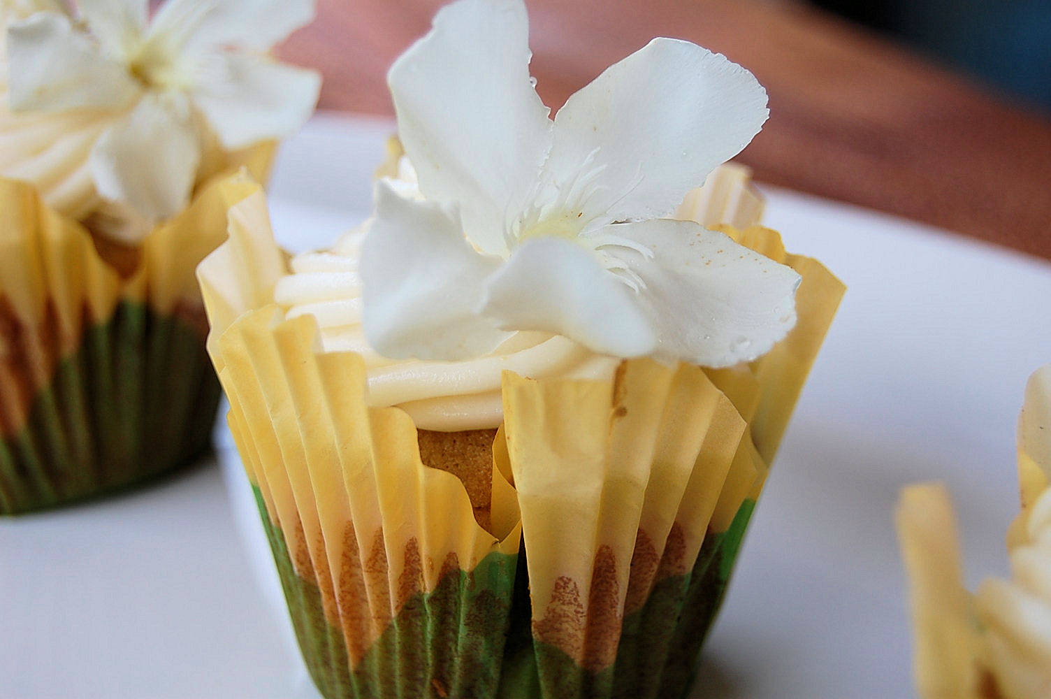 hummingbird-cupcakes-spring-is-here