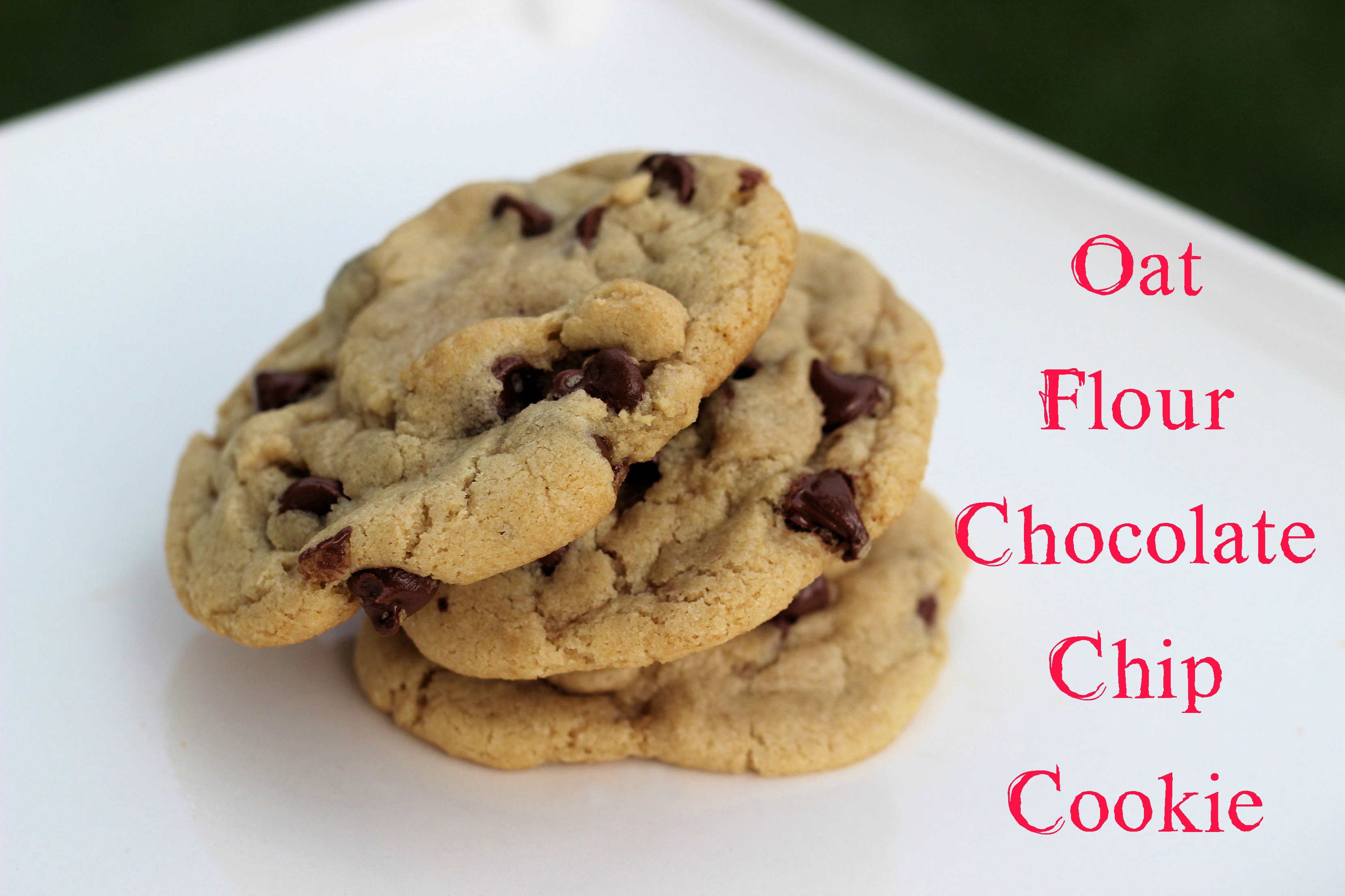 The Best Gluten Free Chocolate Chip Cookie and the runner-ups ...